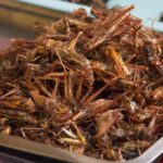 Locusts can be found all across Southeast Asia